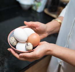 metabolic balance recipe with eggs